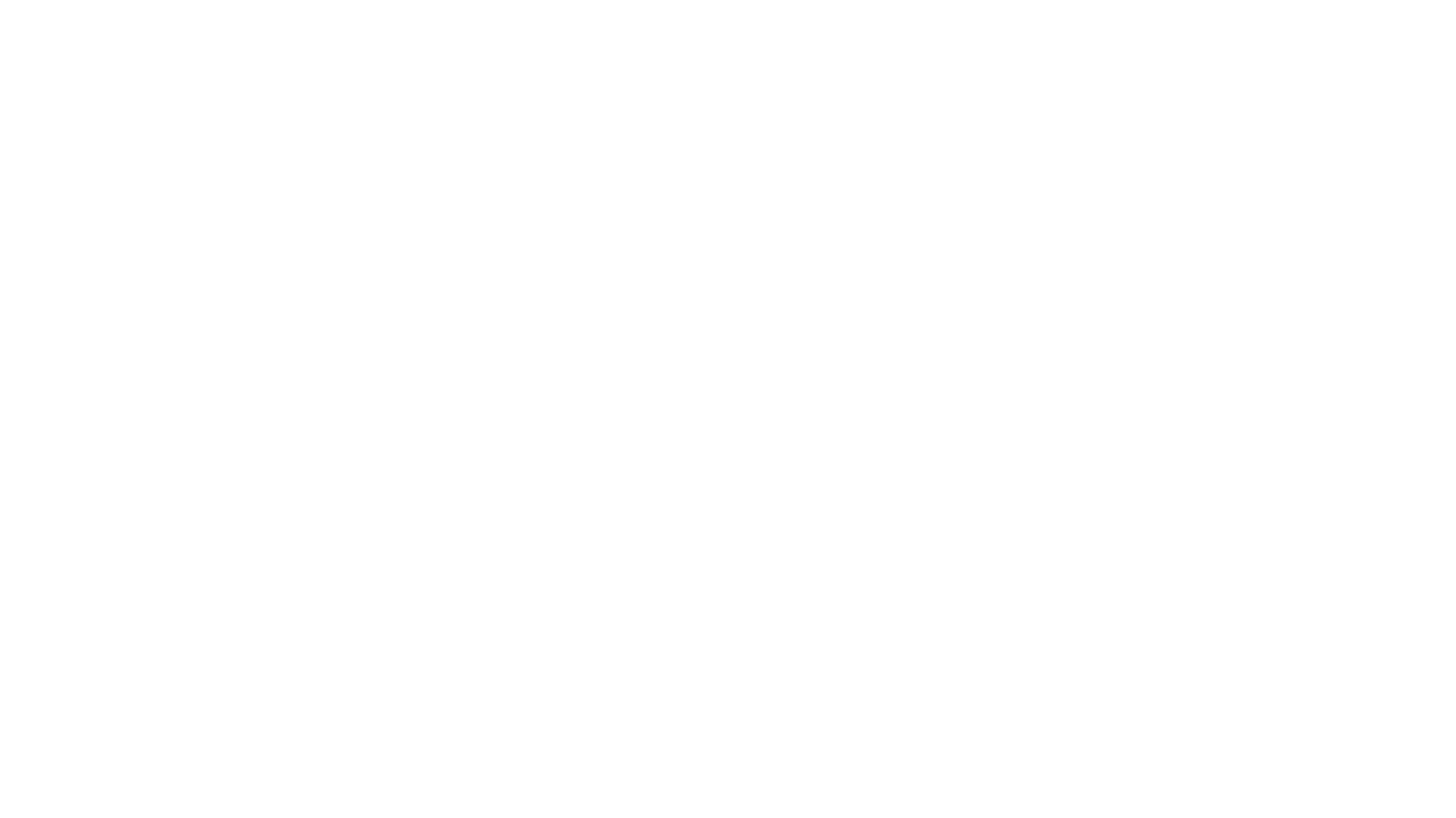 Indrisec Security Services Logo